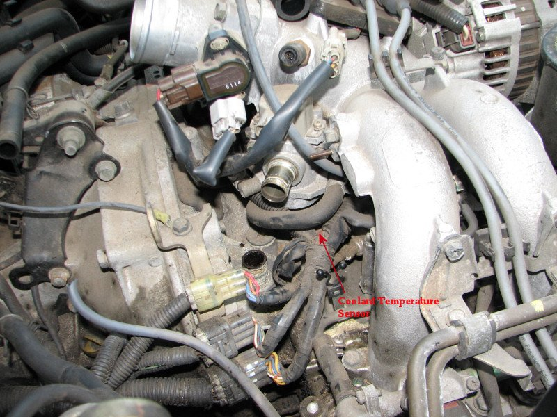 ford engine coolant temp sensor  ford  free engine image