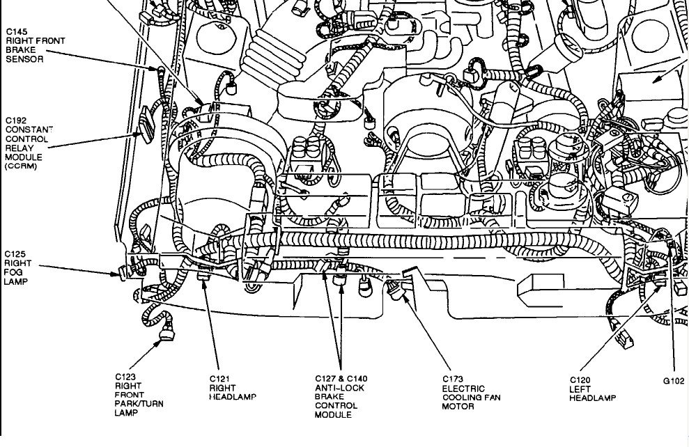 1998 mustang fuel pump location  1998  get free image