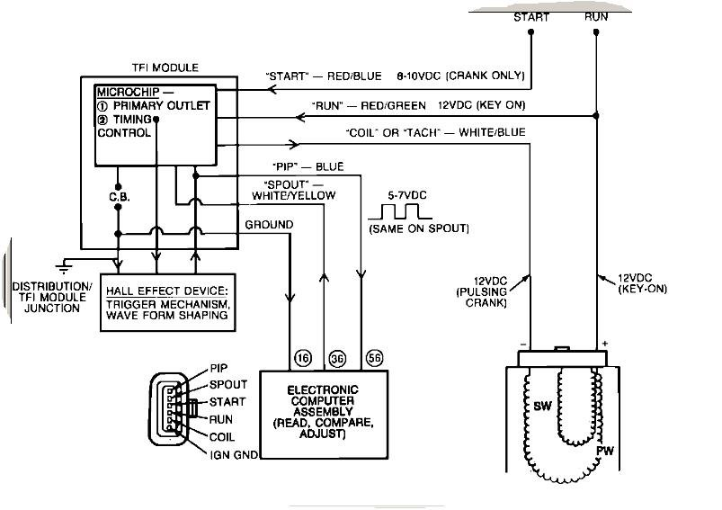 1987 cougar wiring diagram 1987 f150 wiring diagram #10