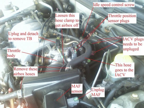 infiniti i35 engine diagram with Infiniti I30 Egr Valve Location on 4722 2002 Pathfinder Oxygen Sensor furthermore Infiniti Q45 Wiring Harness further 3y44u Infiniti 99 I30 Will Crank Wont Start Just Changed furthermore  in addition 2006 Infiniti M35 Fuse Box Diagram.