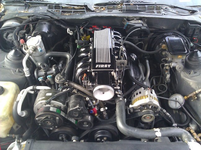 1987 pontiac carburated complete engine wire harness and computer the diagrams give you the color codes here is a good shot at the best same abortion my creation graphic
