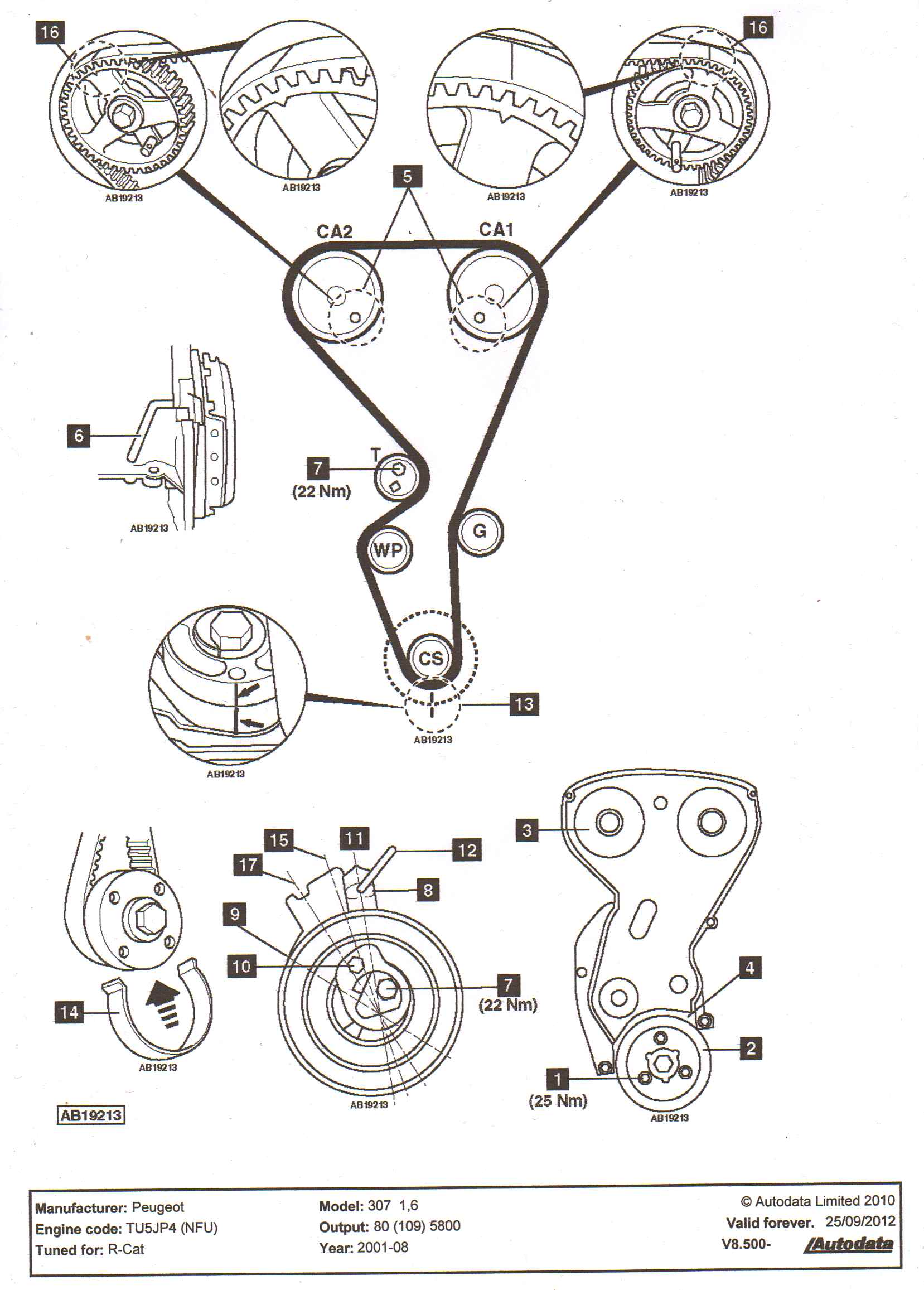 timing belt engine diagram timing free engine image for user manual