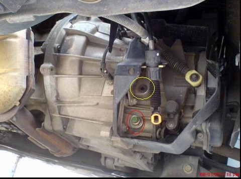 2002 ford focus manual transmission drain plug