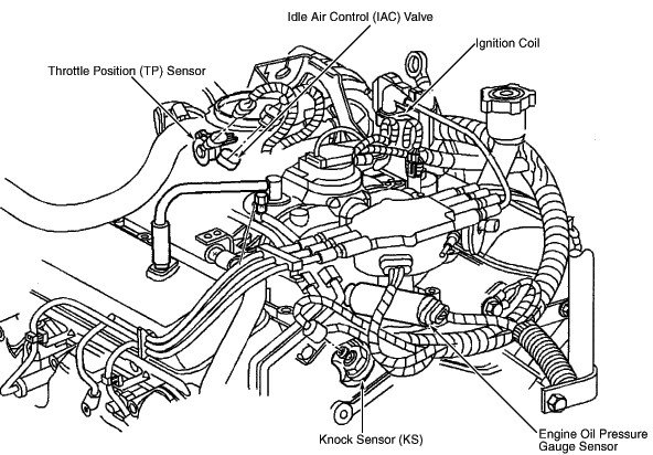 2003 honda accord iac valve location  2003  free engine