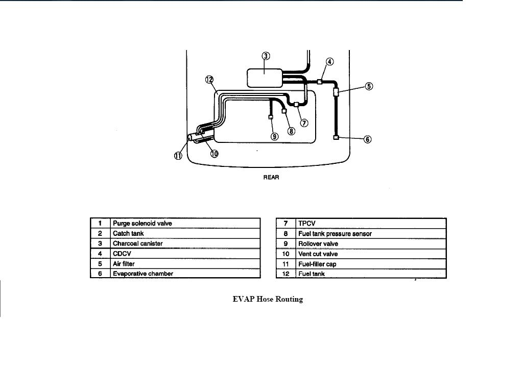 how can i get a hose routing diiagram for the miata  99