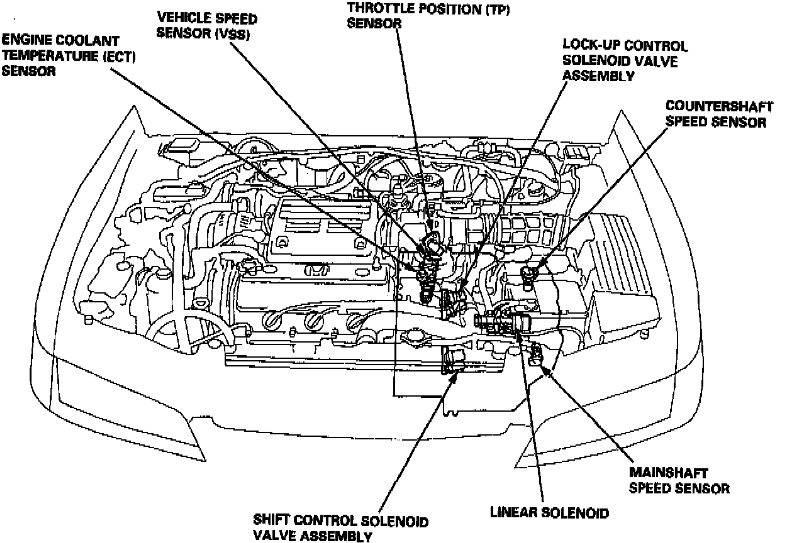 1996-honda-accord-engine-diagram images - frompo