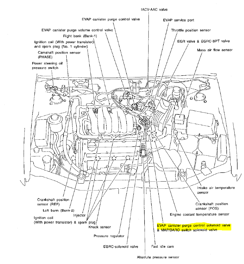 2008 scion tc belt diagram html