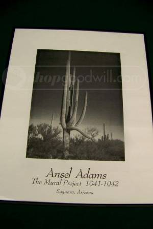 I have a ansel reproduction called the mural project for Ansel adams mural project prints