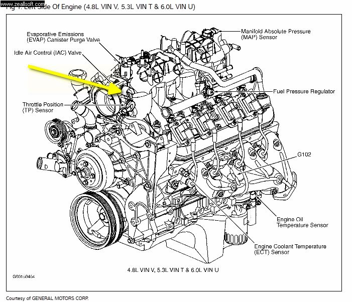 2004 trailblazer wiring schematic  diagrams  wiring