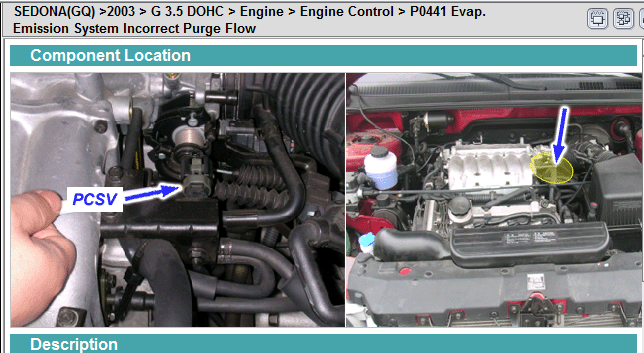 I Have A Code Po441 Evaporative Emission System Incorrect Purge Flow  On My 2003 Kia Sedona