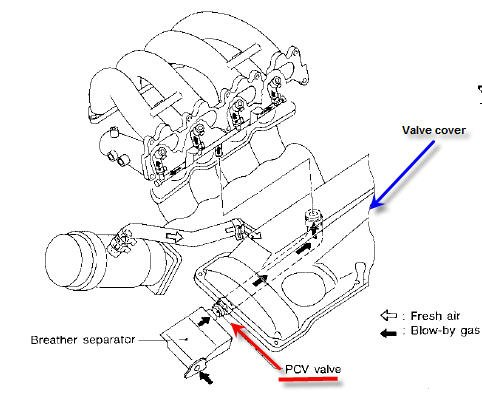 Wiring Diagrams For Kawasaki Klr650 together with 2003 Honda Accord Foglight Wiring Harness additionally Subaru Fuel Pump Relay Wiring Harness Diagram additionally Power Door Lock Wiring Diagram 2000 Subaru Forester likewise 2006 Nissan Altima Stereo Wiring Diagram. on 2001 nissan maxima headlight wiring diagram