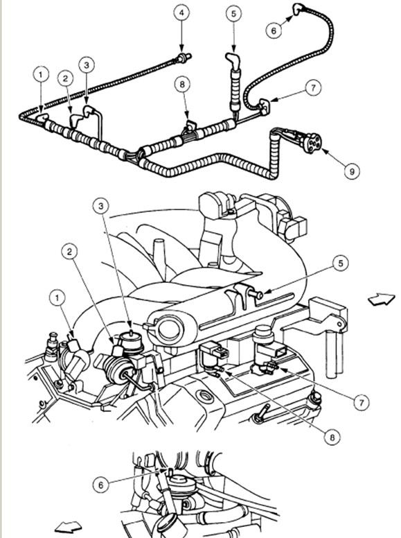 3m3by 1997 F150 Xl 4 2l V6 Runs Fine Till Warms Up Idles Rough on 1994 ford explorer vacuum hose diagram