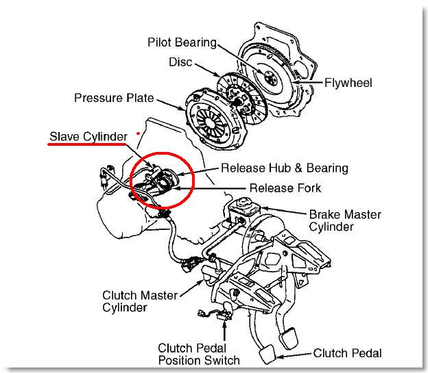 how to find out what kind of transmission you have