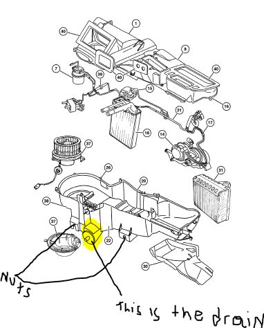 Jeep Liberty Pcm Location together with Dodge 1500 Fuel Filter likewise 2003 Daewoo Matiz Euro Iii Engine Parts  partment Diagram together with Chrysler 200 Ac Drain Hose Location also P 0900c1528025f988. on 2015 dodge neon
