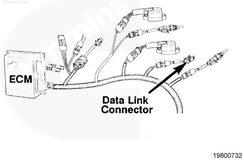 celect plus ecm connector location