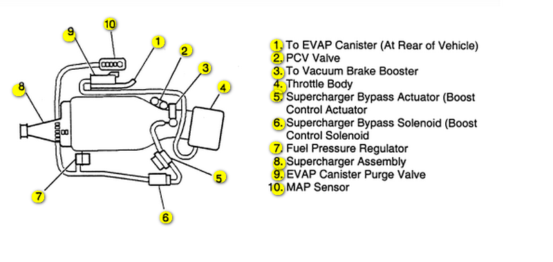 I Need Vacuum Hose Routing Diagram For 1998 3800 Series Ii. Buick. 1998 Buick Regal Electrical Diagrams At Scoala.co