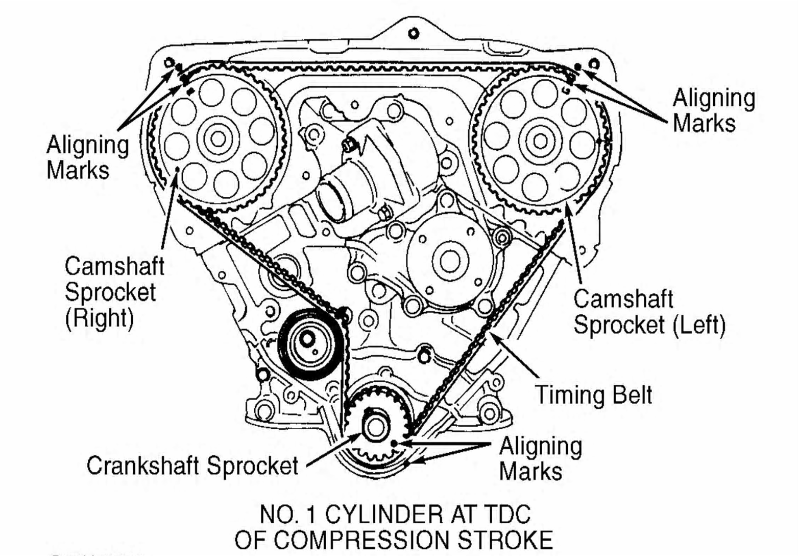 how do you properly replace a timing belt